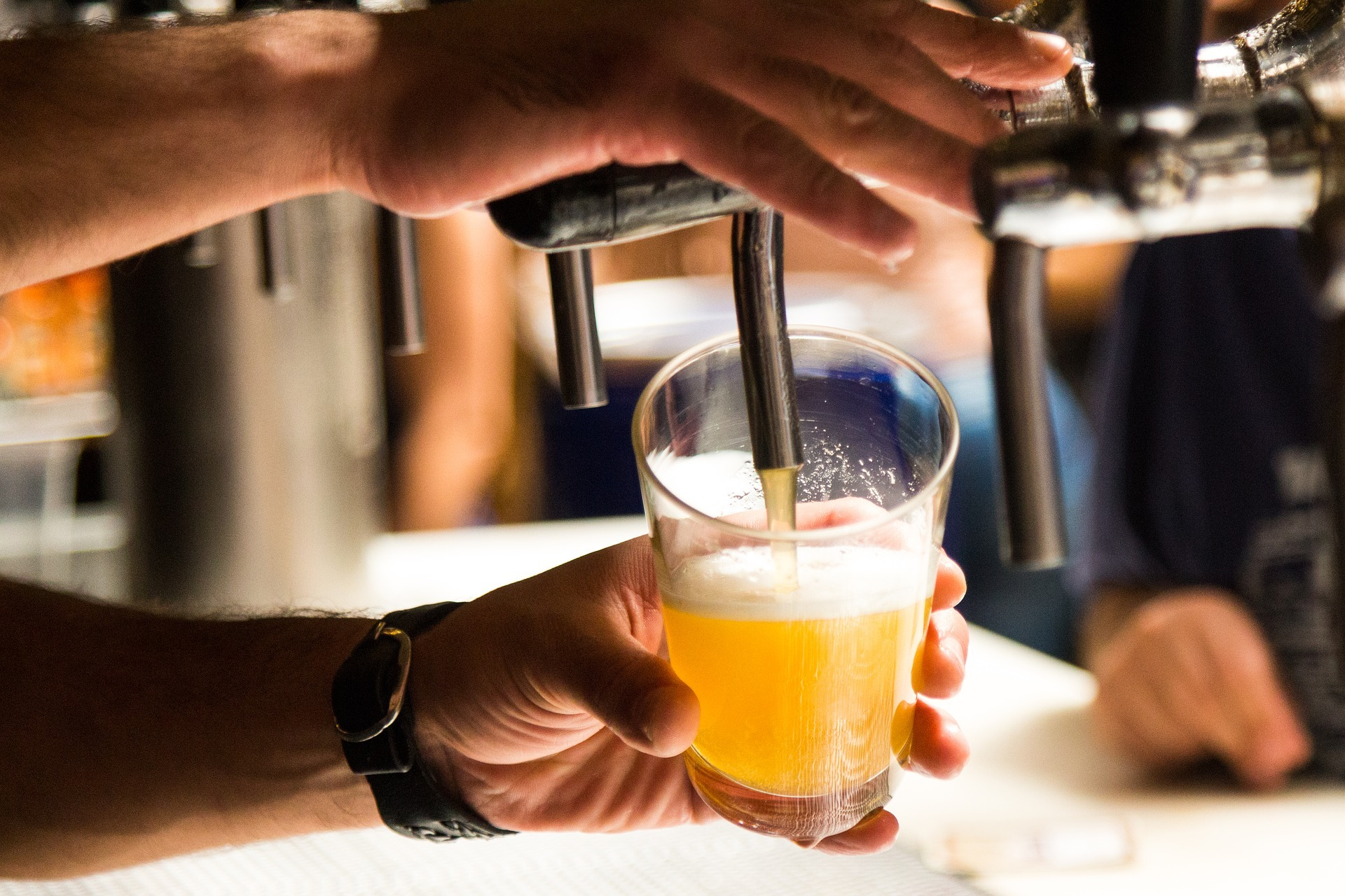 Craft beer from tap