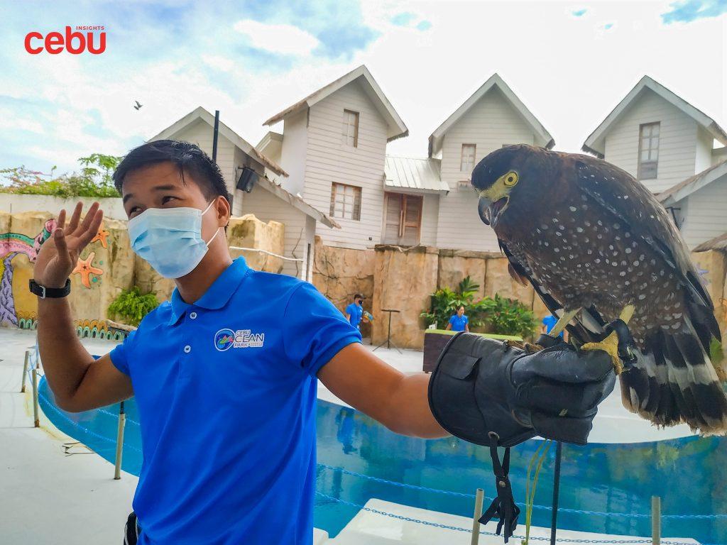 Bird trainer at the Cebu Ocean Park